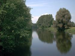 Bode bei Rothenförde