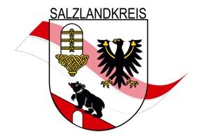 Symbol Salzlandkreis