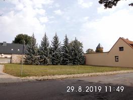 Baugrundstück, Blick von der Alten Güstener Straße/Ecke Leopoldstraße